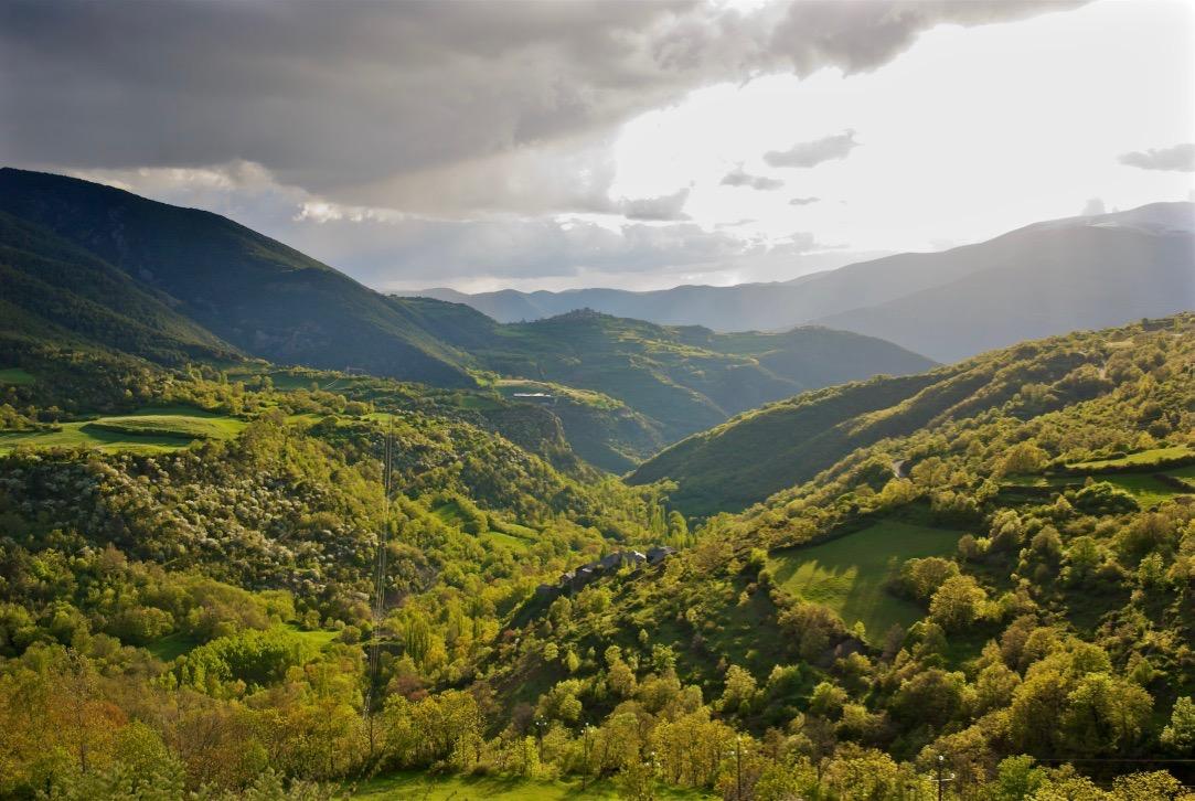 Fauna de la Vall de  Siarb